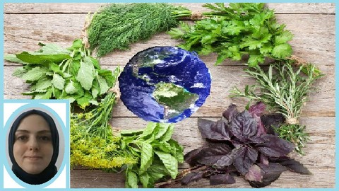 What's about Pharmacognosy in the Globalized Space?