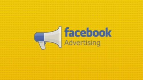 Facebook Ads For Online Entrepreneurs (Hands On Bootcamp)