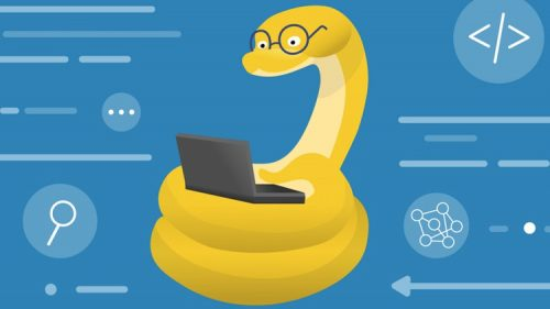 The Ultimate Python Guide for Beginners